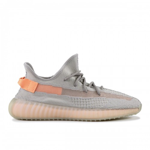 https://yeezyboost.in.ua/image/cache/catalog/yezzy350/true_form/krossovki_adidas_yeezy_boost_350_v2_true_form_eg7492_3-500x500.jpg